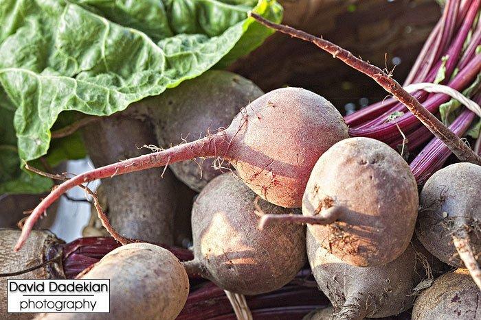 Bally Machree's beets