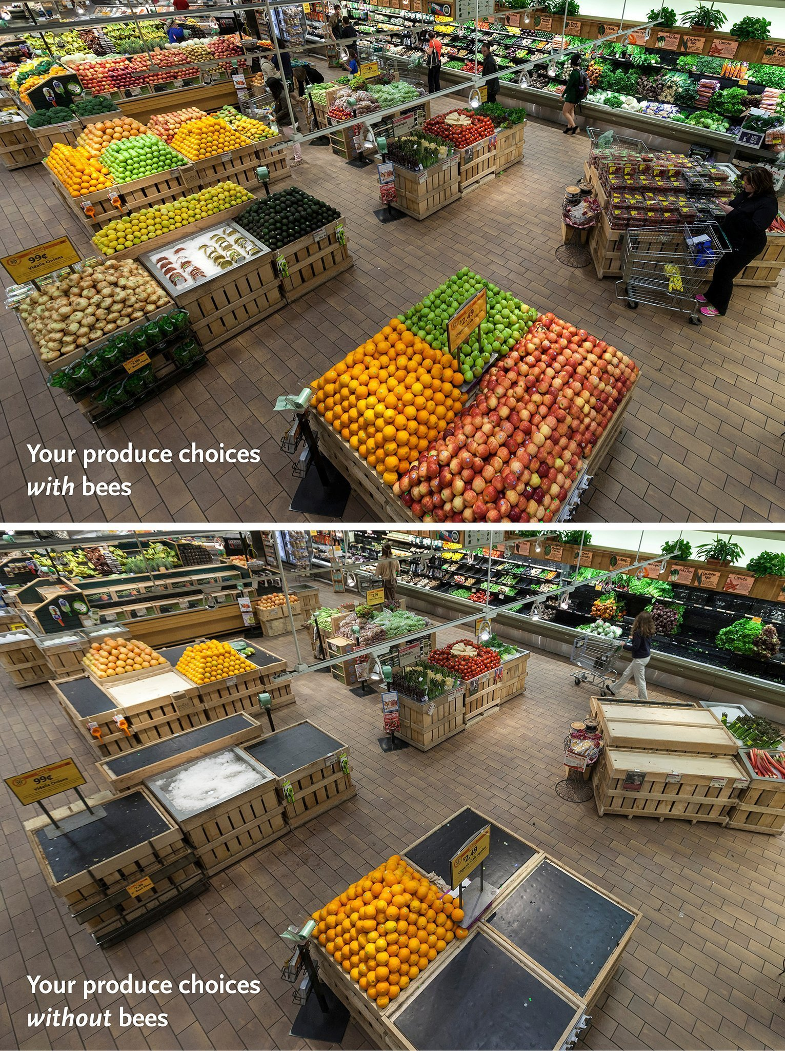 This is what your grocery store looks like without bees